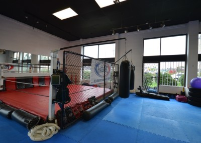 Ring and Training Area